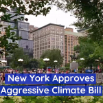 New York Wants To Go Carbon Free