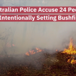 New South Wales Police Charge People For Intentional Bushfires